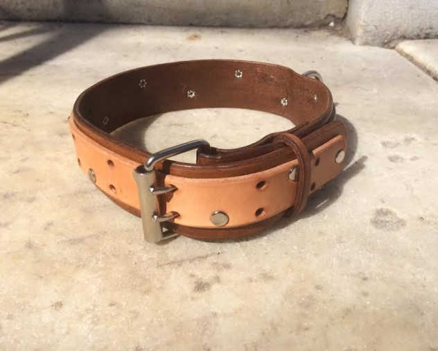 collar2